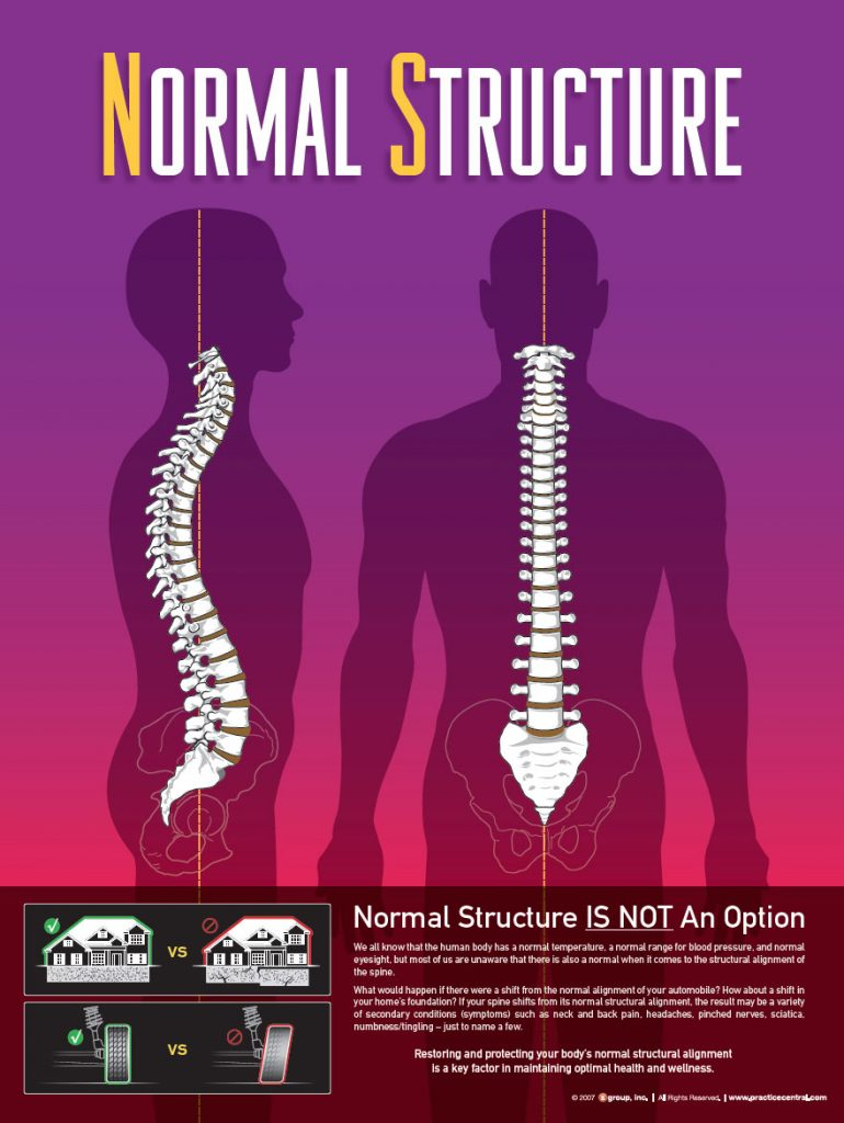 Structural Corrective Care Chiropractic Columbus, Ohio  normal-structure