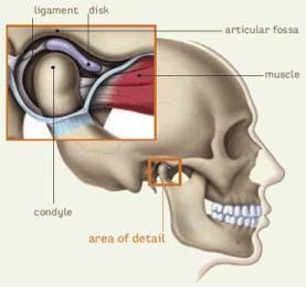 TMJ Treatment and Relif Columbus Ohio  Chiropractor Hilliard Ohio - Abundant You Chiropractic